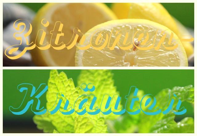2013-05-26 Zitronen-Kräuter-Sirup