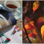 Handmade Kultur Blogstar