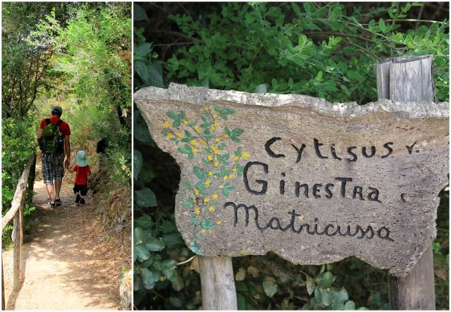Wanderung nach Su Tempiesu