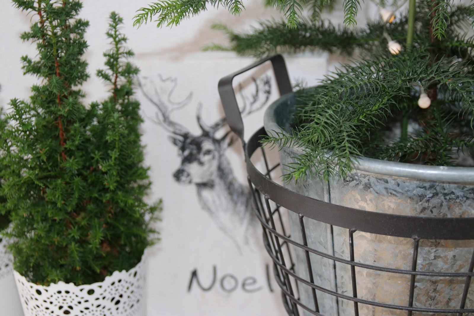 Weihnachtsdeko, Skandi, Scandic, Dekoration, Wohnzimmer, Weihnachten, Advent, Schwarz, Weiß, Natur, Grün, Pflanzen, Urban Gardening, Leiter, Typographie, Interieur, Ideen, Bayern, Deutschland, Germandy, Shabby, Used